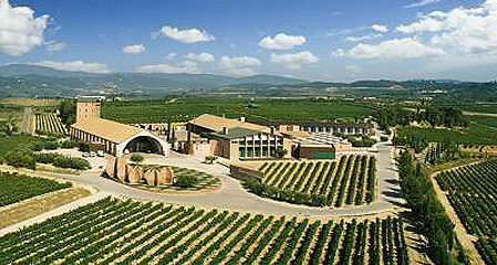 (预订)拉古斯庄园干红葡萄酒 chateau grand puy